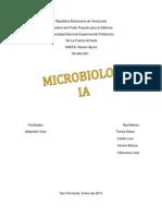 informe microbiologia.docx