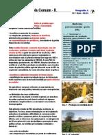Política Agrícola Comum (11.º) (2)