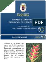 Expo Heliconias