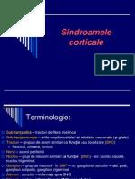 Cortex Cerebral - Sindroame Corticale