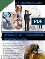 Semana 1 Psicologia Organizacional[1]