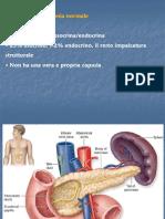 Neoplasie Pancreas Chiusa