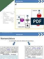 aminoácidos JMOL