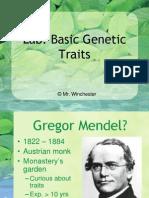 basic genetic traits
