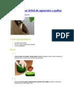 Cómo plantar aguacates o paltas.pdf