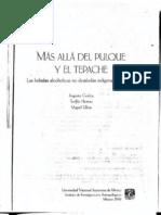 MÁS ALLÁ DEL PULQUE Y EL TEPACHE (Las Bebidas Alcoholicas No Destiladas Indígenas de México) Godoy, Herrera, Ulloa,