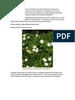 Endemismos Adelantado.pdf