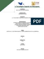 Fact. Micro y Macro Ambientales Capitulo 2, Mercadotecnia. Heidy