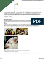 celulitis juvenil.pdf