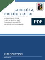 Anestesia Raquidea Epidural Caudal