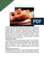 Tanatologia Medico