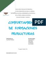 Comportamiento de Formaciones Productoras (2)