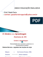 Aula Meritta Neuropsicopedagogia e educação  inclusiva 2014