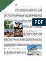 106947006 Comercio Interno y Externo en Guatemala