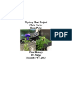 mystery plant project carter piche