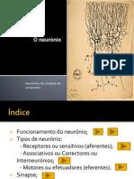 neuronio-140309134143-phpapp01