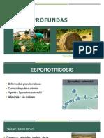 Esporotricosis presentacion