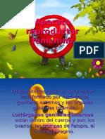 Aparato reproductor femenino (presentacion) (funciones) (muy completa) (con imagenes diseñadas y 3d)