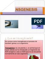 TRANSGENESIS.pptx