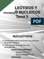 Tema_5_nucleótidos y Ácidos Nucleicos