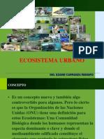 Ecosistema Urbano TACHITO