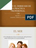 73570452 El Ser y El Deber Ser de La Practica Profesional