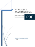 Anatomia y Fisiologia Del Sistema Renal