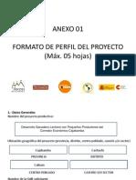 FormatoDePerfilDelProyecto Ganado