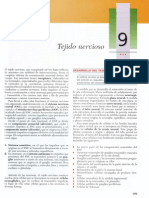 Cap 09 - Tejido Nervioso