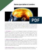 20140424 Hábitos Cotidianos Que Dañan El Cerebro - Nuria Llavina