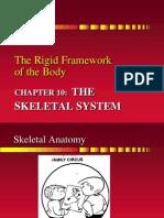 Chapter 10 the Skeletal System - Sp10 (2)