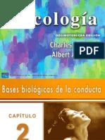 MORRIS Psicologia Cap2