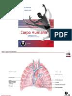 Sistema Circulatório e Respiratório