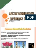 Ppt Genetika Kelamin Dan Pewarisan Sitoplasmik