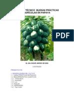Buenas Practic as Papaya