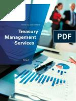 Pub 20131113 Treasury Management Services En