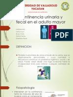 Incontinencia Urinaria y Fecal en El Adulto Mayor
