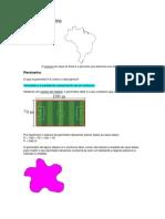 Área e Perímetro.docx