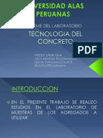 TECNOLOGIA DIAPOSITITVAS.pptx