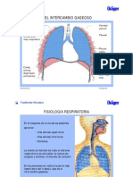 mecanica_respiratoria