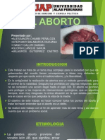 Diapositivas Del Aborto