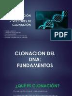 Bacteriófago Lambda