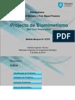 Project Biomimetismo