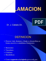5-inflamacion2010-100724180211-phpapp01