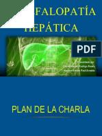 Presentación, Encefalopatía Hepática