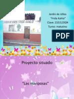 Proyecto de Luci