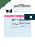 Ficha 2 Estrategias Para Enseñanza y Aprendizaje Jessica Isamr López Rul