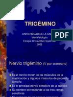 TRIGÉMINO (2)