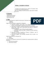 Tema 5 Estructuras