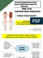 Presentation1 Fungsi Badan